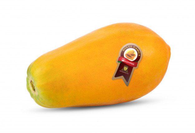 https://expovelesa.com/wp-content/uploads/2020/07/papaya_producto-626x429.jpg